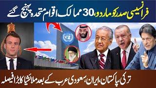 30 Islamic and Arab Countries Strong Action About France Macron In United Nations II Turkey, Saudi