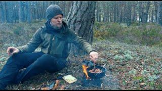 Solo Bushcraft, Wood Stove Cooking,  Wild Food Recipe. Scarlet Elf Cup